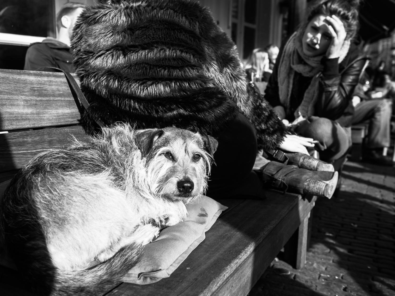 fokko muller street photography - 140322 - 002.jpg