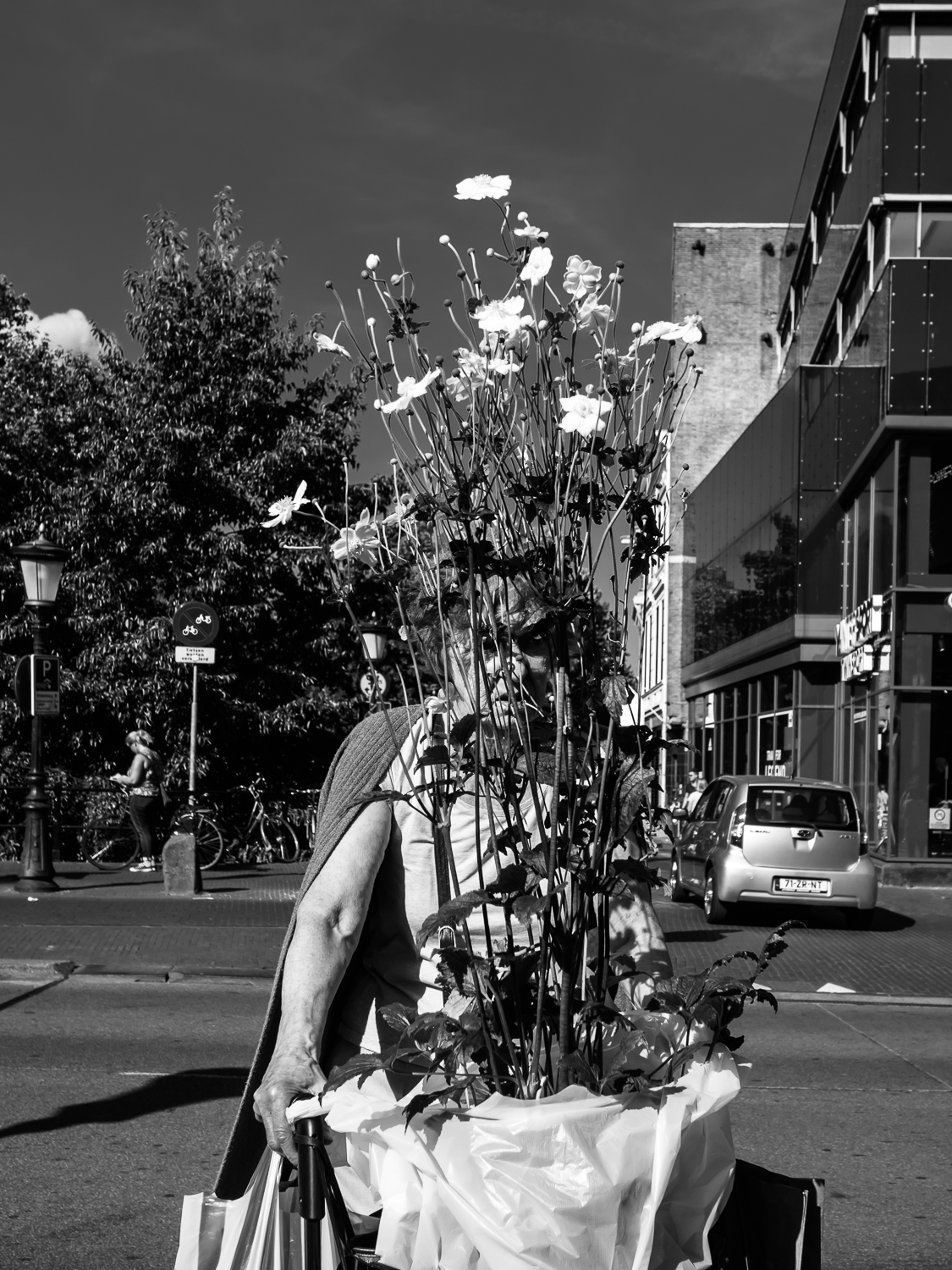 utrecht SEPTEMBER 2016  Shot taken from the Oudegracht..  When I saw this woman hidden behind the plant I immediately recognized a new photo for my    Undercover    series.  Shot with Olympus OMD5 Mark 2 and Olympus 17mm f/1.8