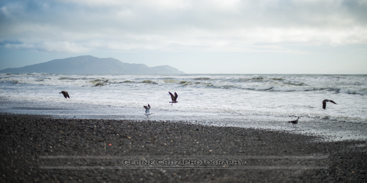 Te Horo Beach with view of Kapiti Island