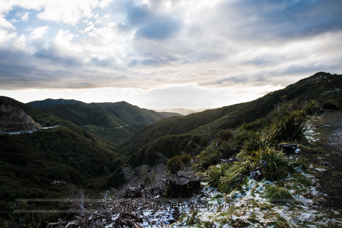 Rimutaka Mountain Park
