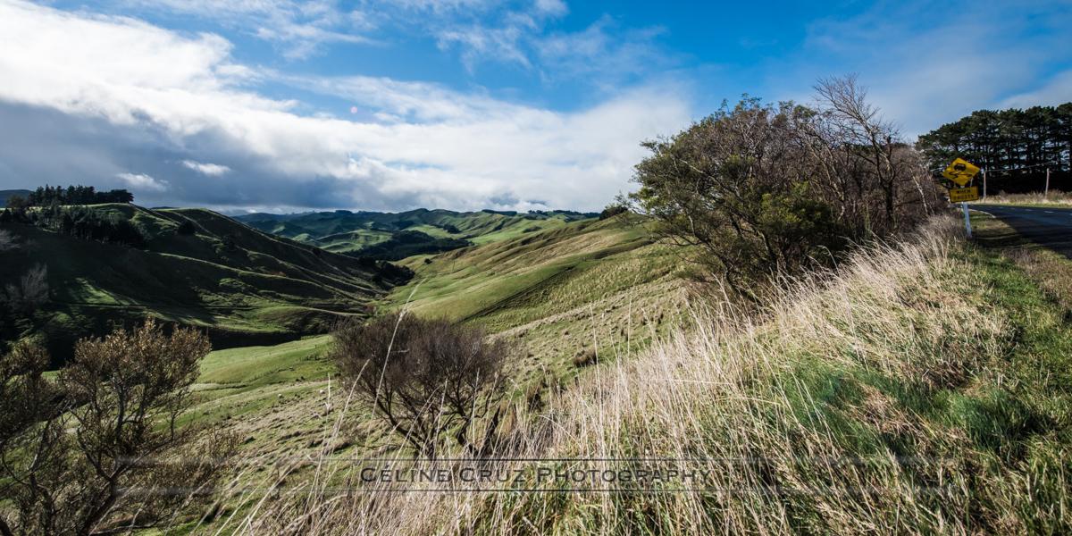 Manawatu- Wanganui