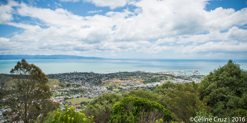 Nelson view from Branford Reserve. You can see the tip of Abel Tasman National Park across the Bay