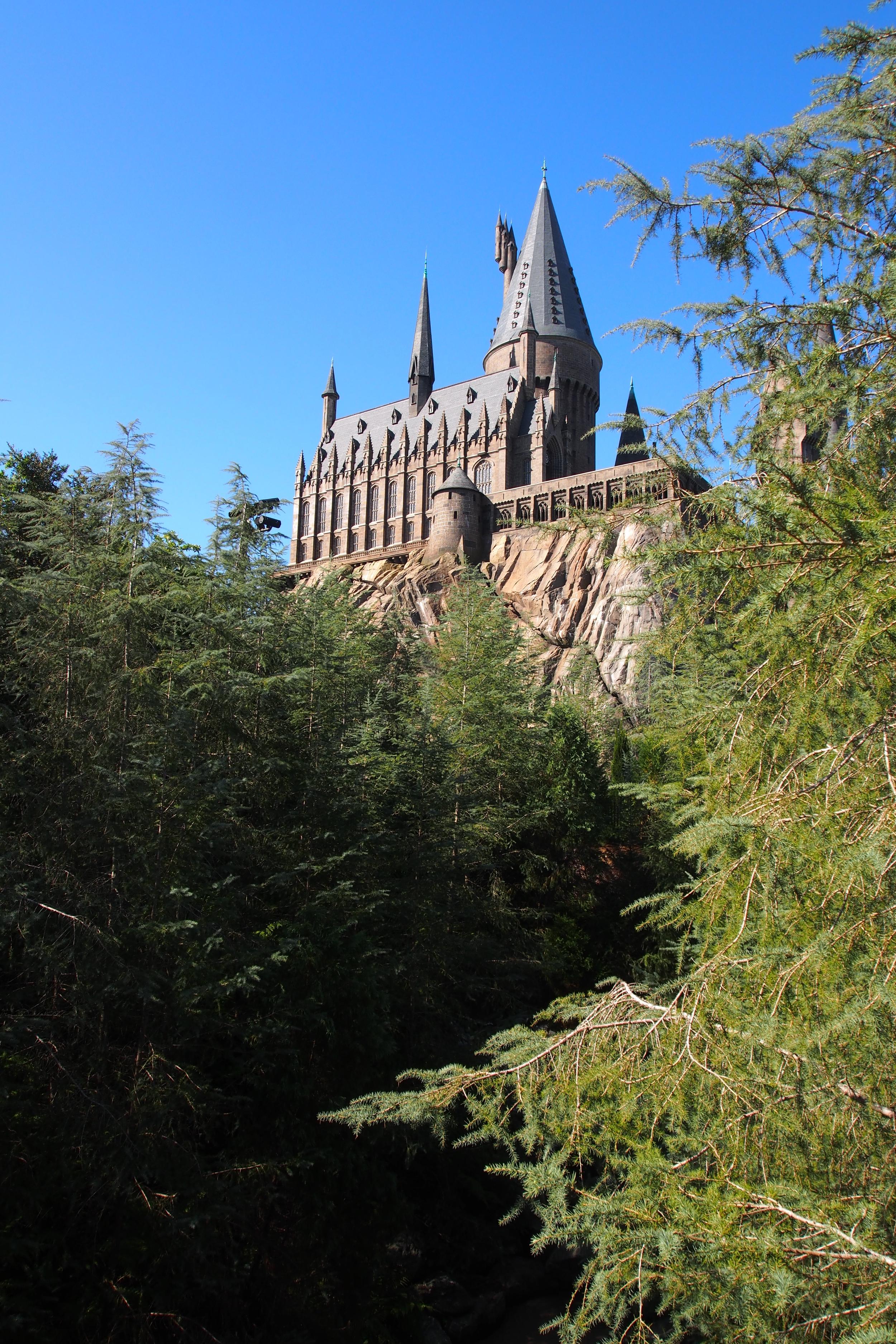 Hogwarts School from Harry Potter