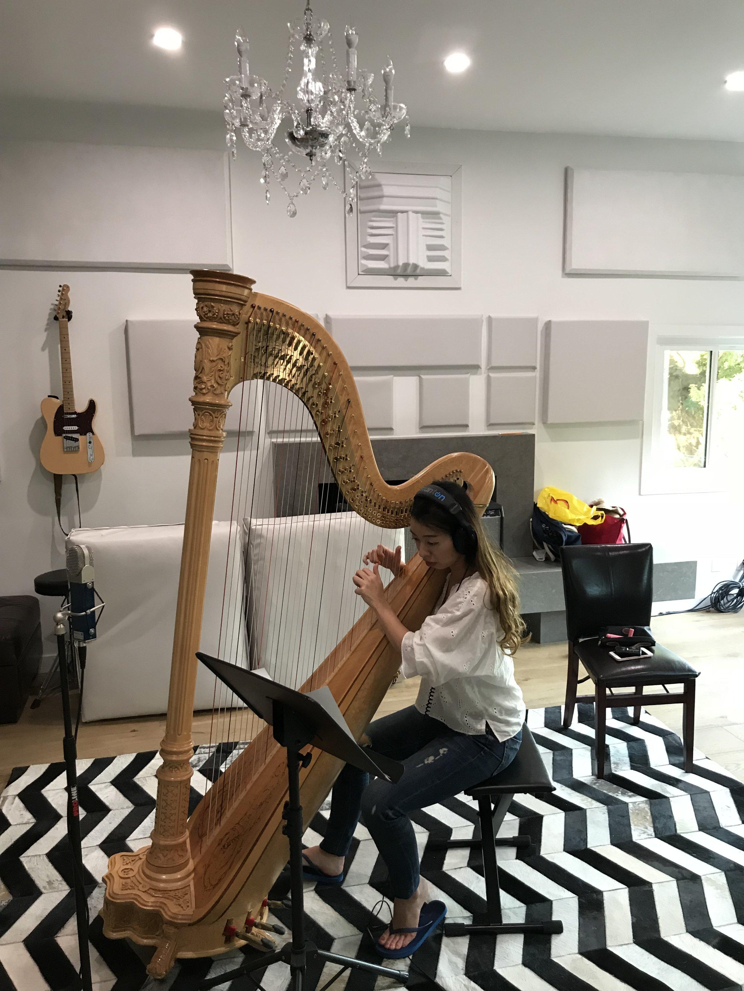 Blanck Records Live Room Harp.jpg