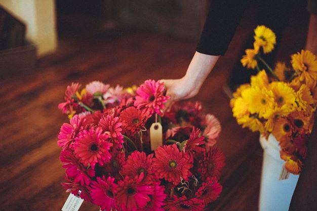 bloomthat.jpg