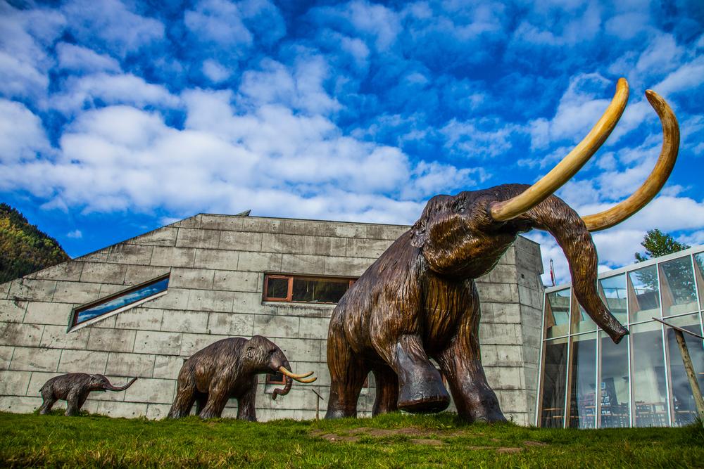 Das wollhaarige Mammut