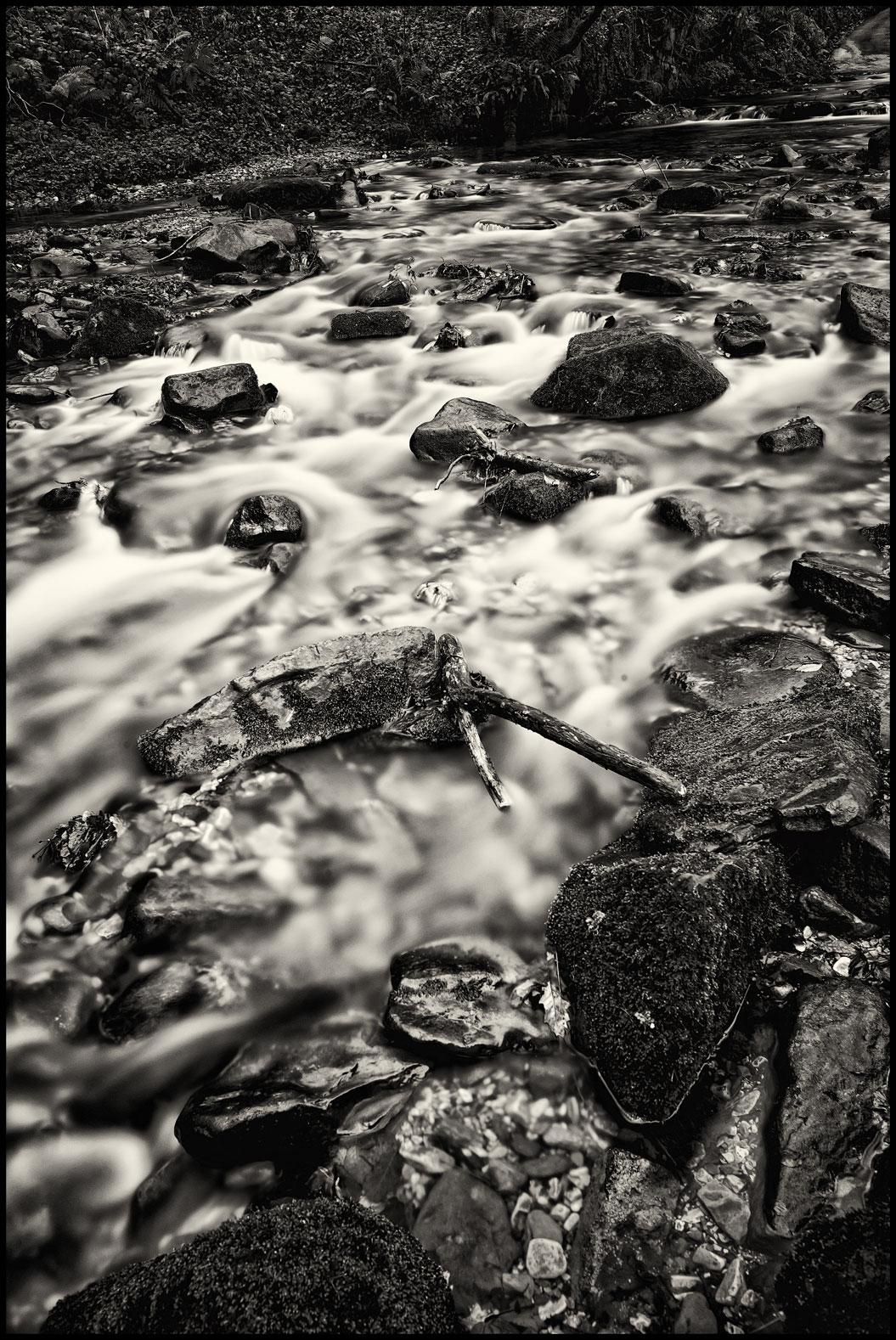 River Clywedog near Nant Mill.