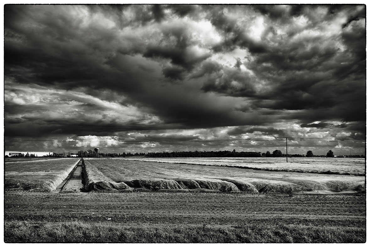 Incoming storm in East Yorkshire this afternoon.