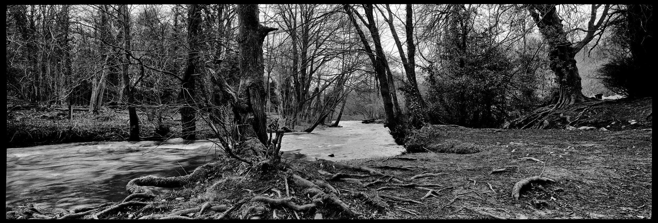 Alyn Waters Country Park.
