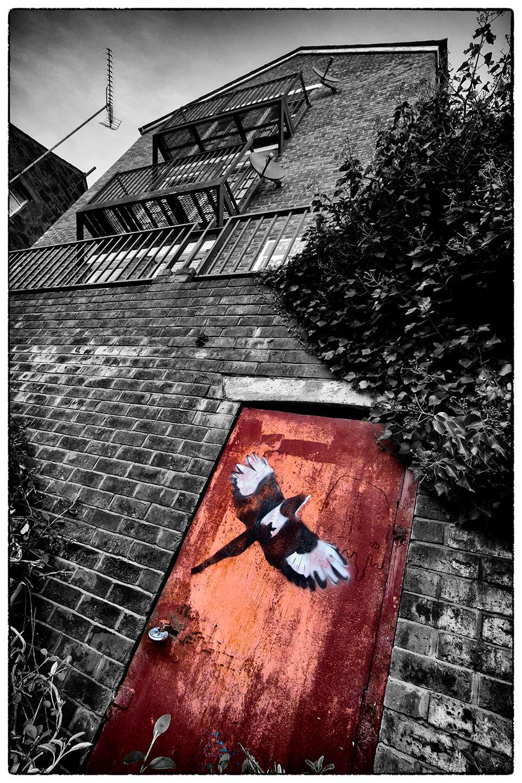 Magpie door, near the church, Wrexham.