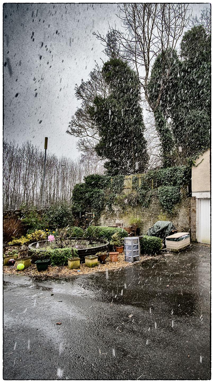 Snowing_7783.jpg