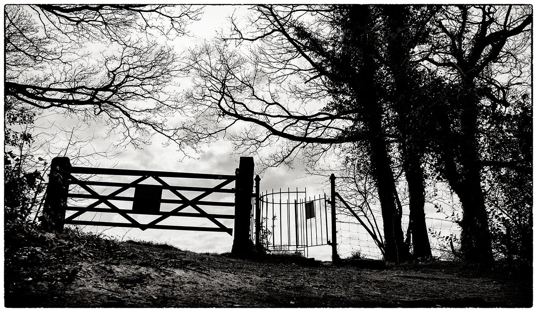 Gates_Ewloe_Castle_5482.jpg