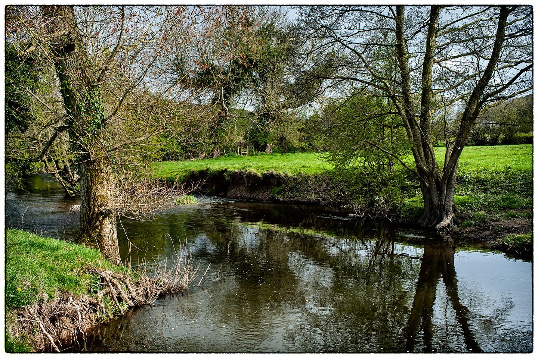 Riverbank1436.jpg