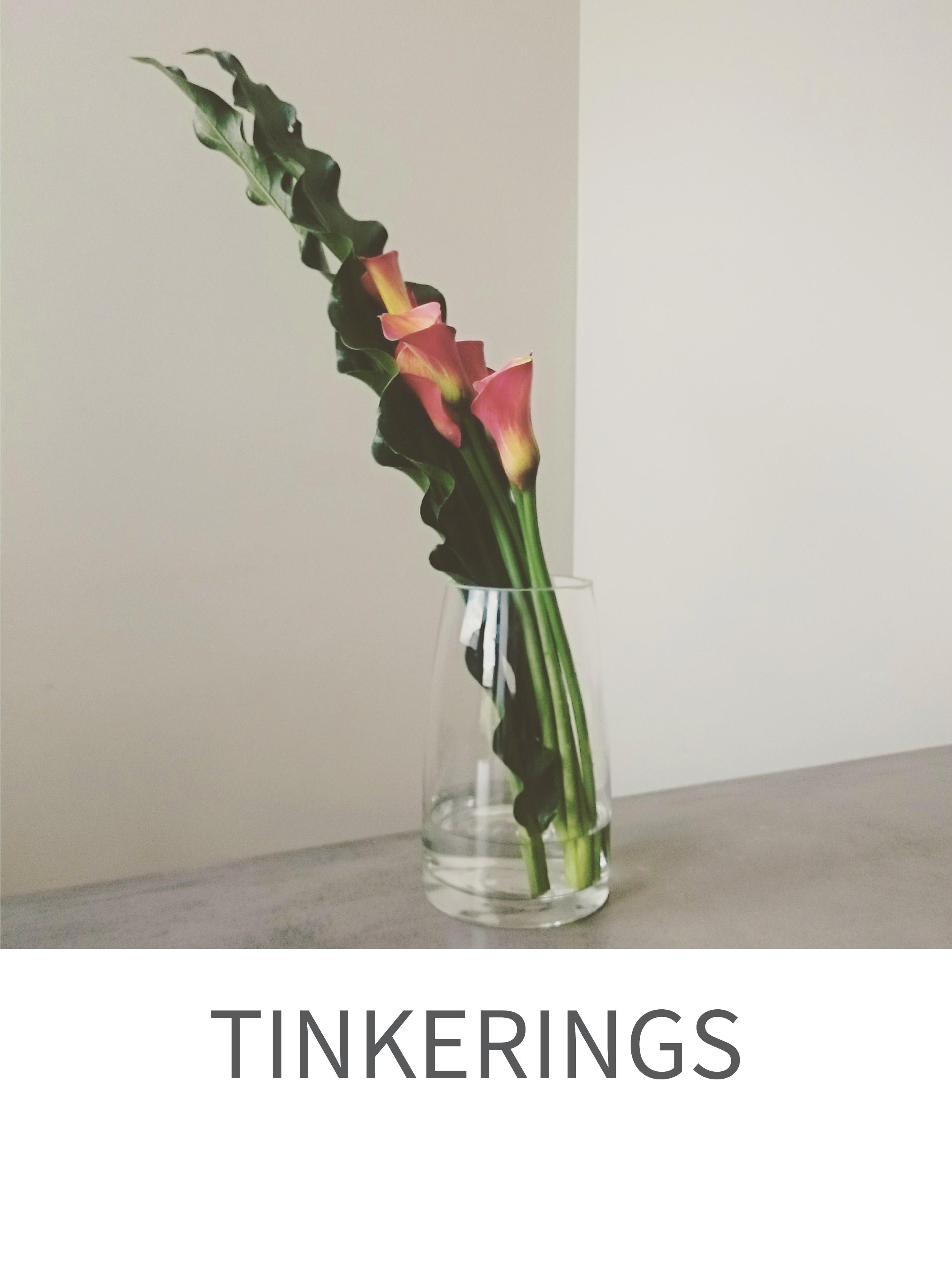 tinkerings
