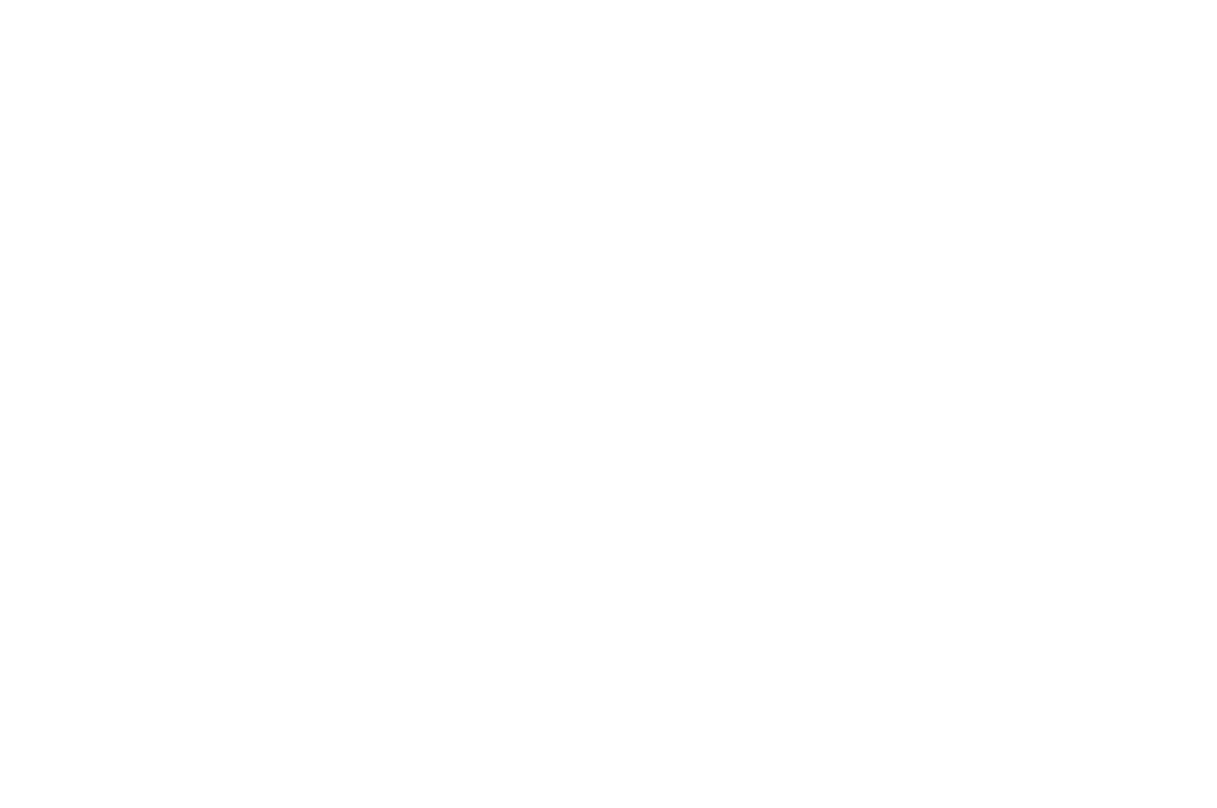 OFFICIAL SELECTION - Arizona Sunburn Film Festival - 2018-2.png