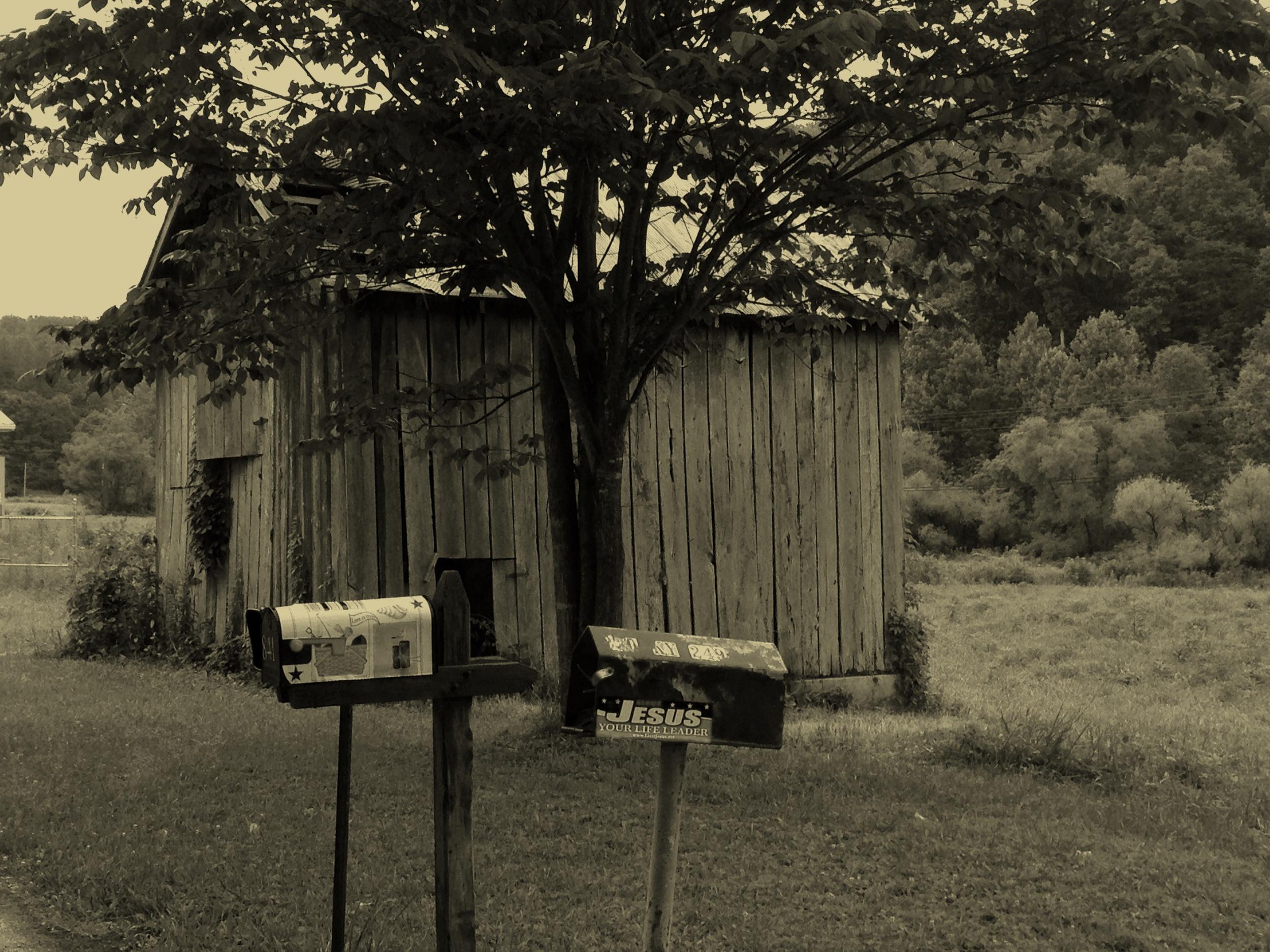 shed4.jpg