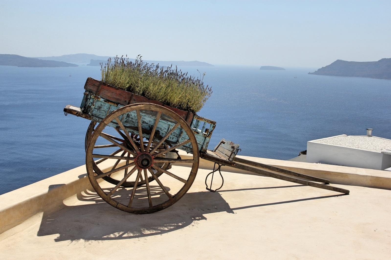 Chariot .jpg
