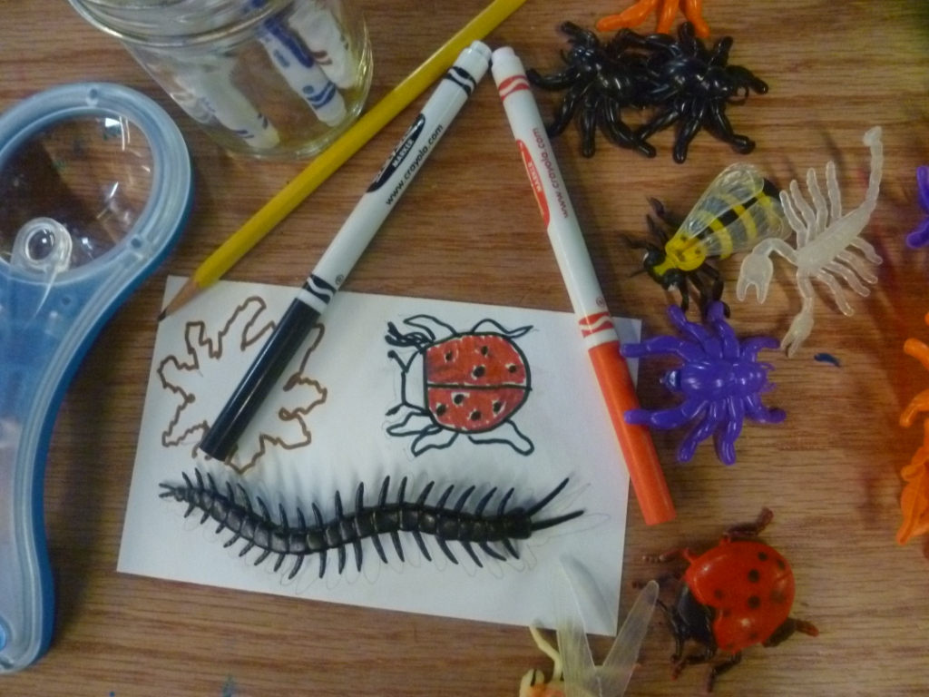 tracing and coloring bugs with markers