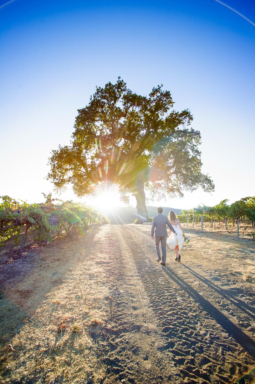 Hammersky Winery Wedding-467_V.jpg