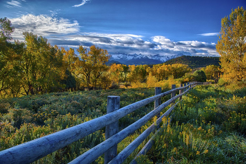 colorado-autumn-aspens13.jpg