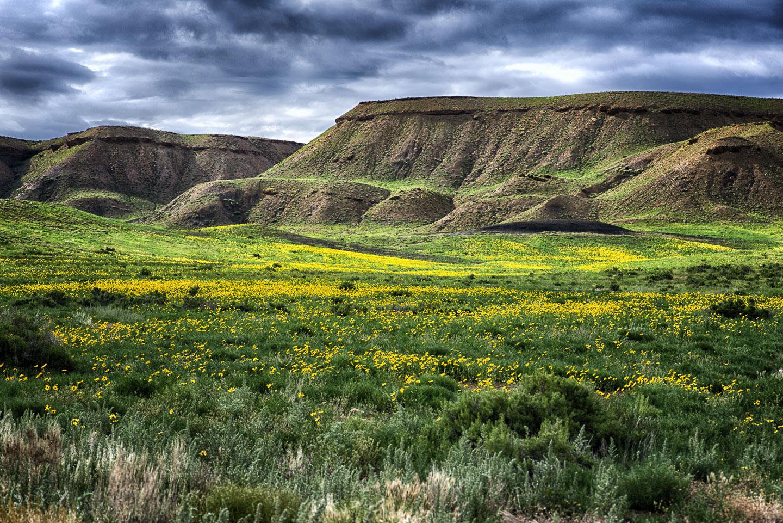 western-colorado23.jpg