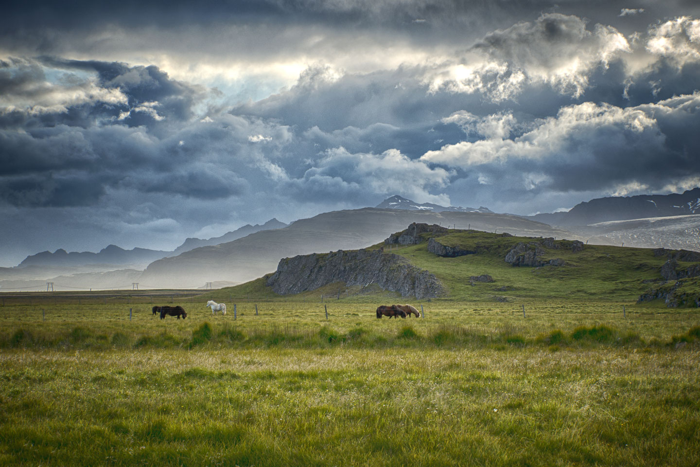 Iceland-07.jpg