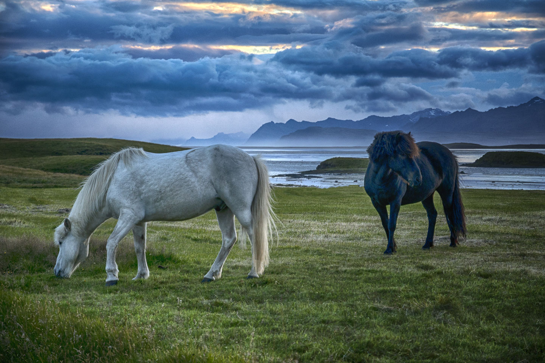 Iceland-08.jpg