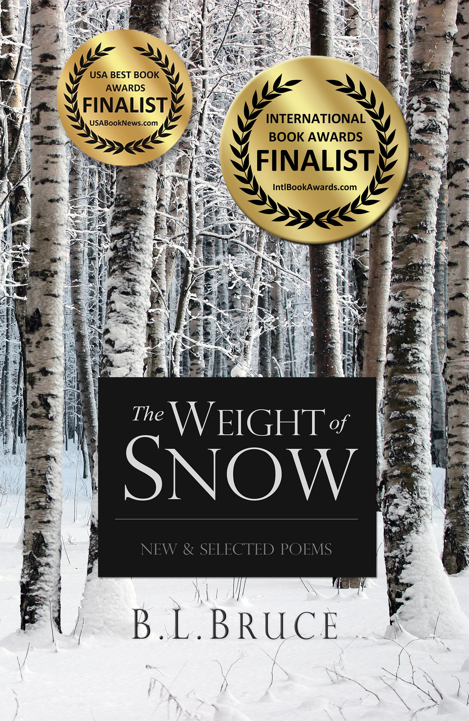 The Weight of Snow: New & Selected Poems