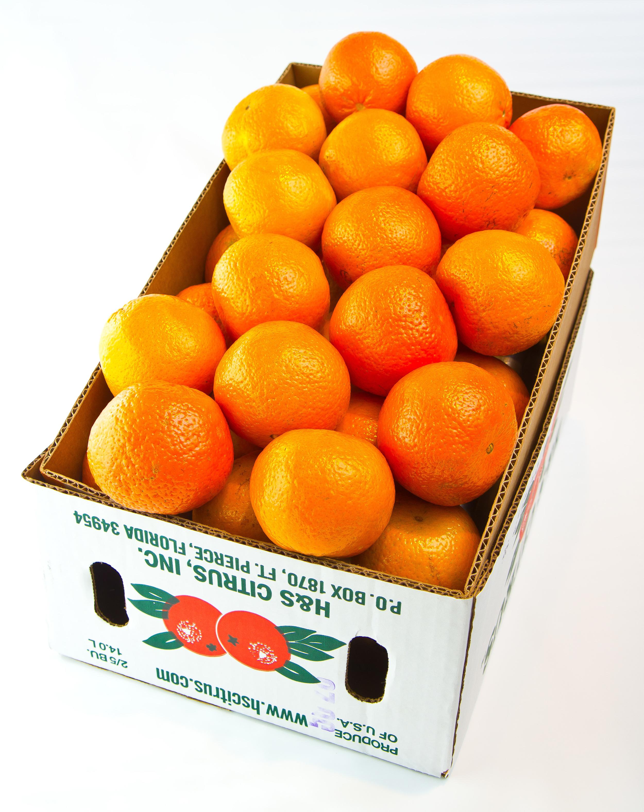 Temple oranges, H & S Citrus