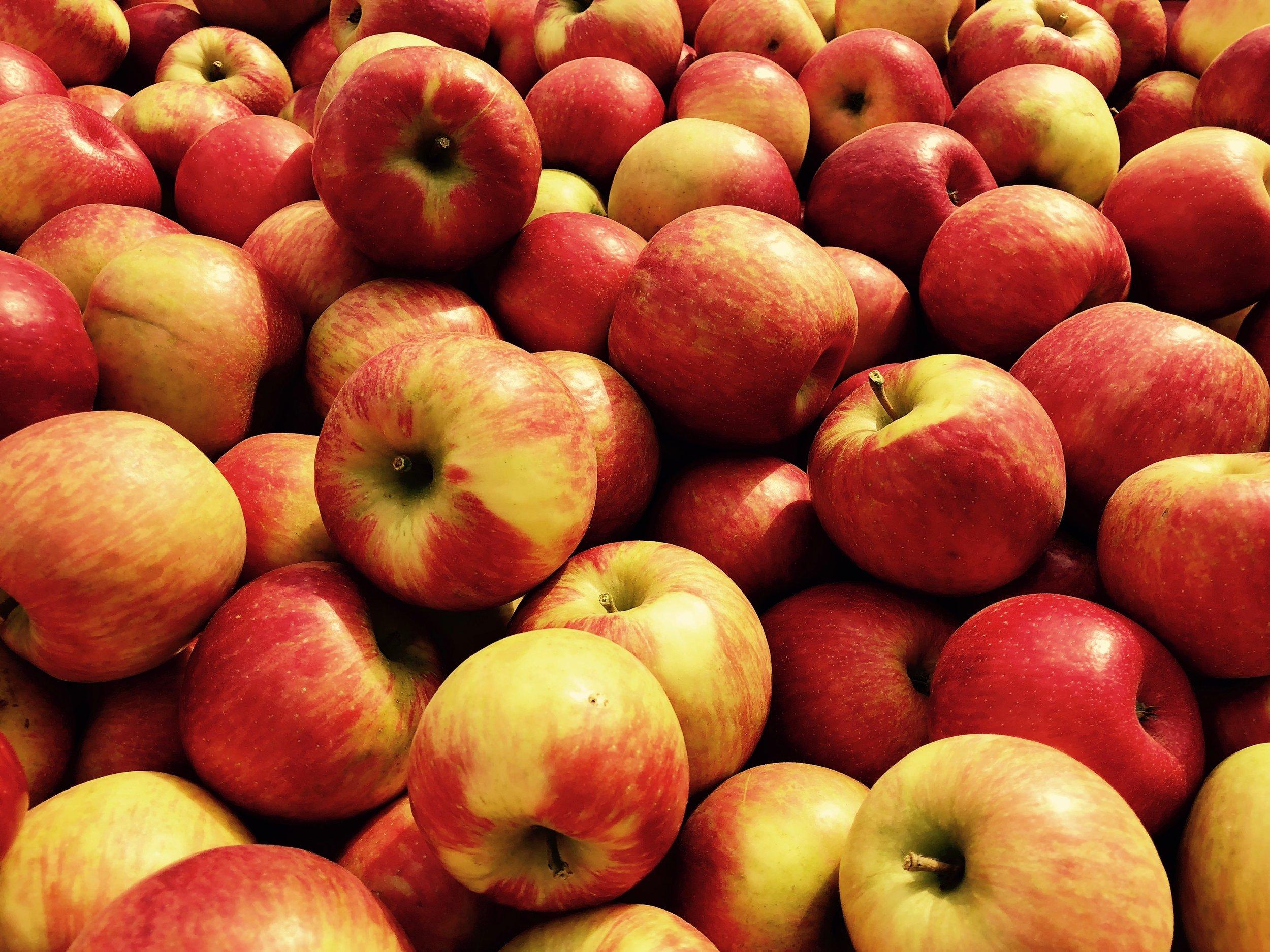 Wisconsin Apples