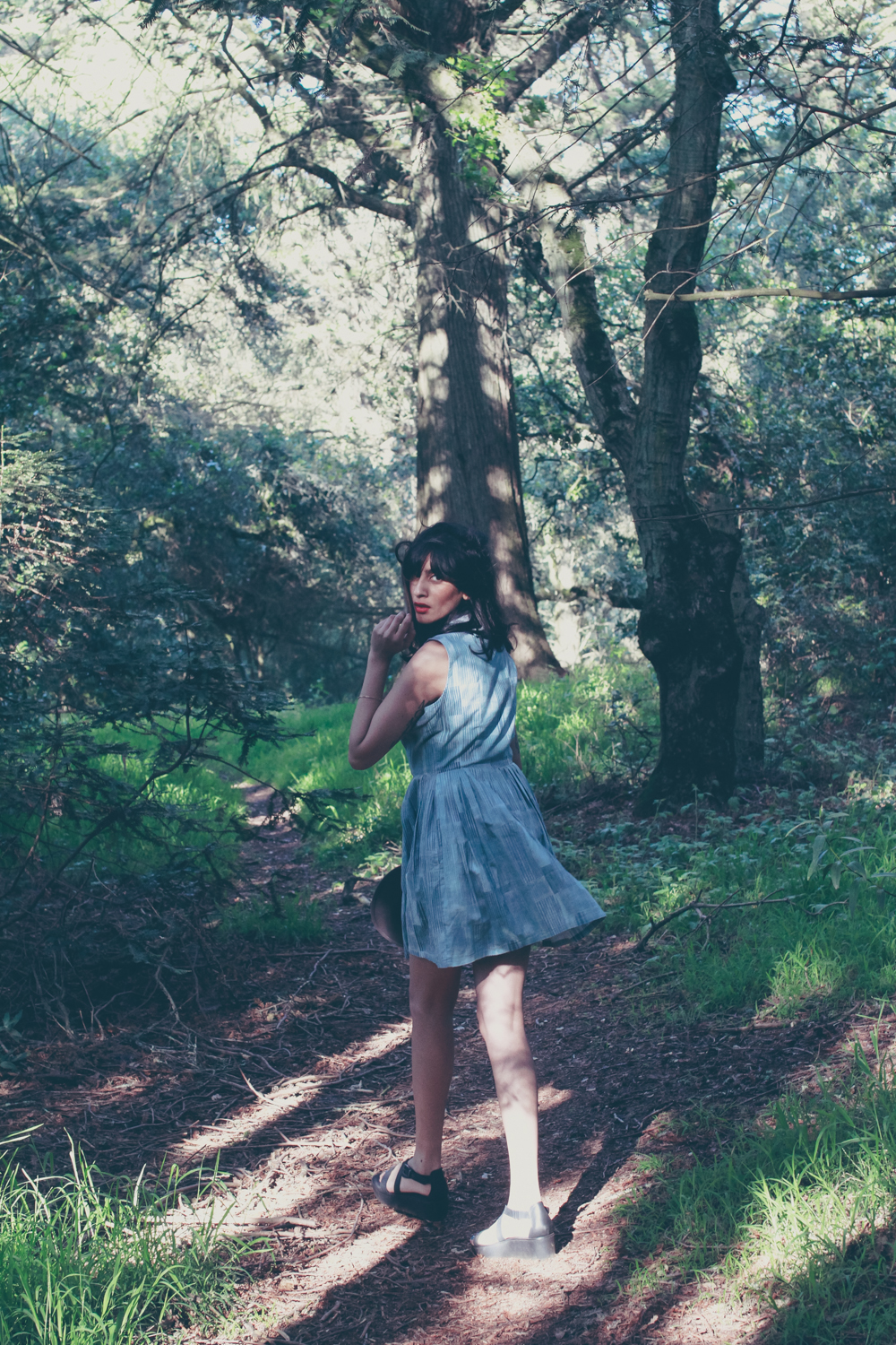 Redwood Forest, Lifetime Collective Dress