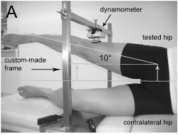 Wilder et al (2009) – sidelying abduction, assessing hip abduction strength