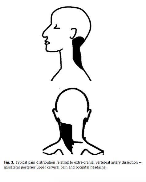 (Taylor & Kerry, 2010, p. 88)