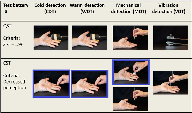 Zhu et al, 2019 page 1830. Cold Detection Threshold (CDT), Warm Detection Threshold (WDT) & Mechanical Detection Threshold with cotton wool (MDT-cotton).