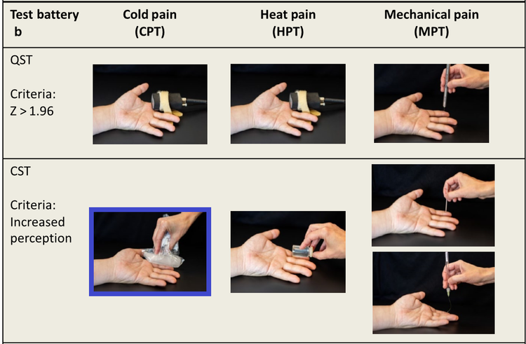 Zhu et al, 2019 page 1830. Cold Pain Threshold (CPT).