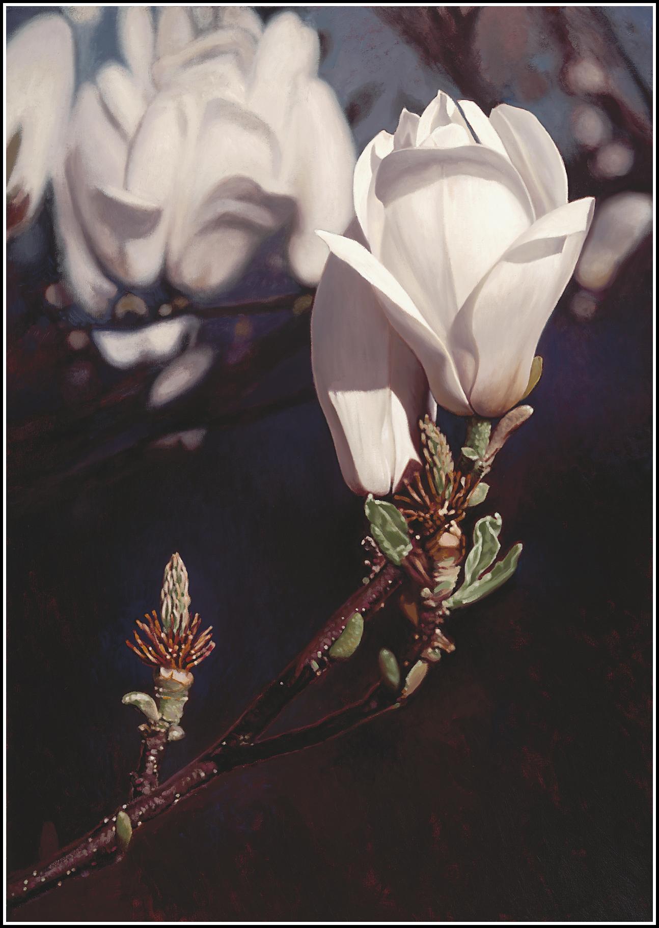 Magnolia 4.png