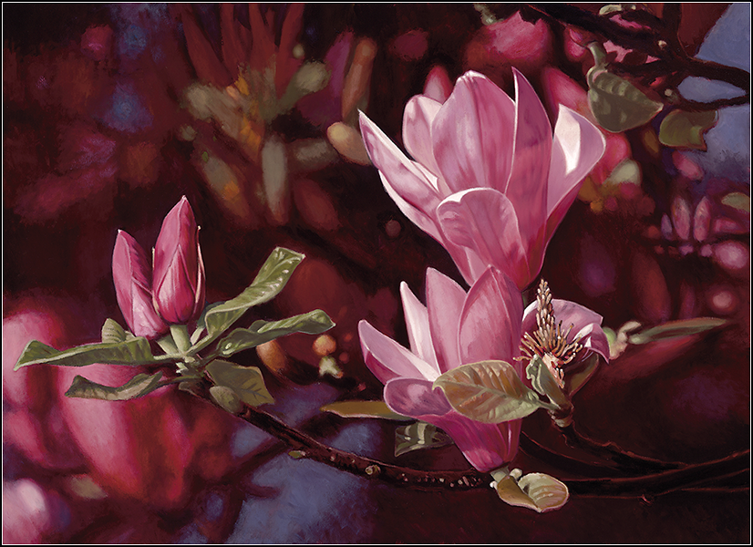 Magnolia 6.png