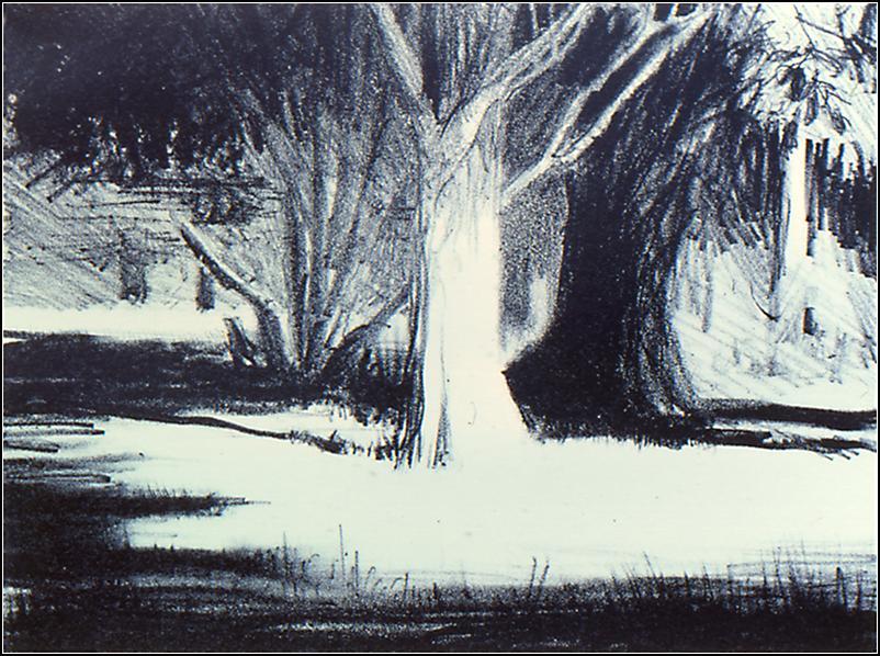 Tree Shadows.png