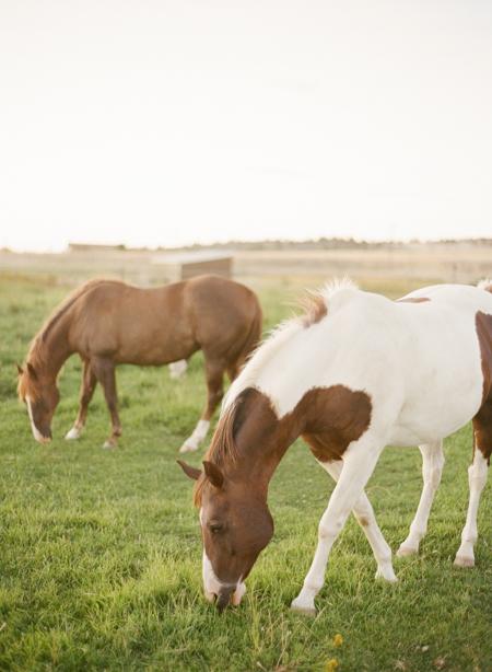 Oregon-Farm-Wedding-43.jpg