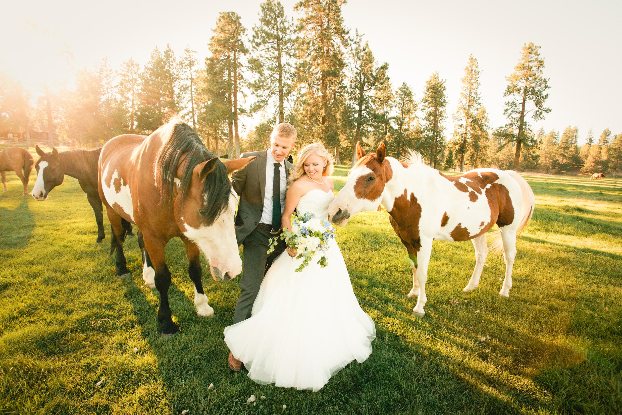 Orrock Wedding_MichelleCross-11.jpg