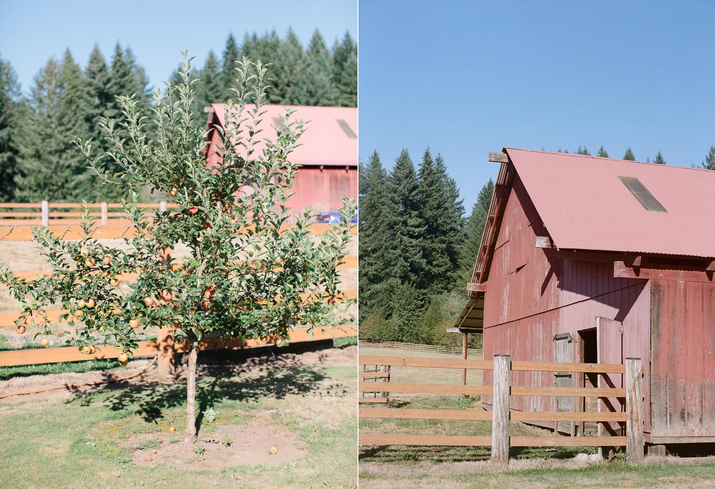 Oregon Barn Wedding by Michelle Cross-1a.jpg