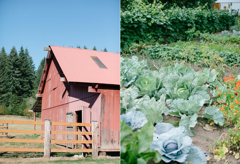 Oregon Barn Wedding by Michelle Cross-40.jpg