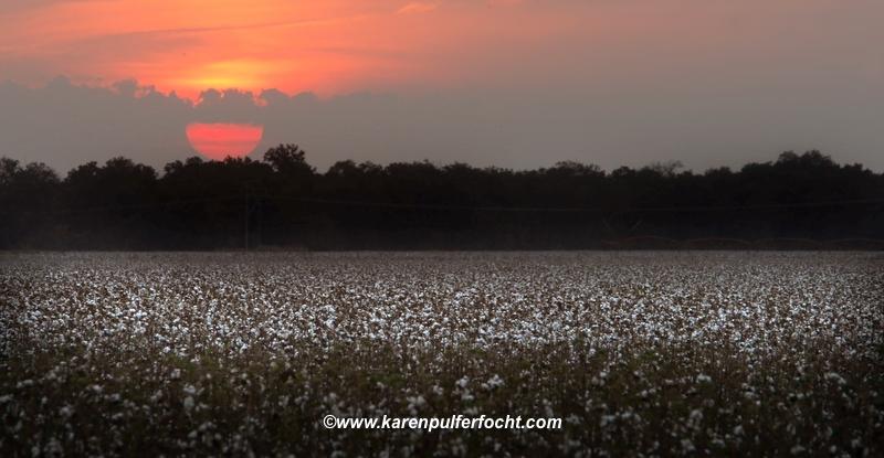 Sunset over Dixie.JPG