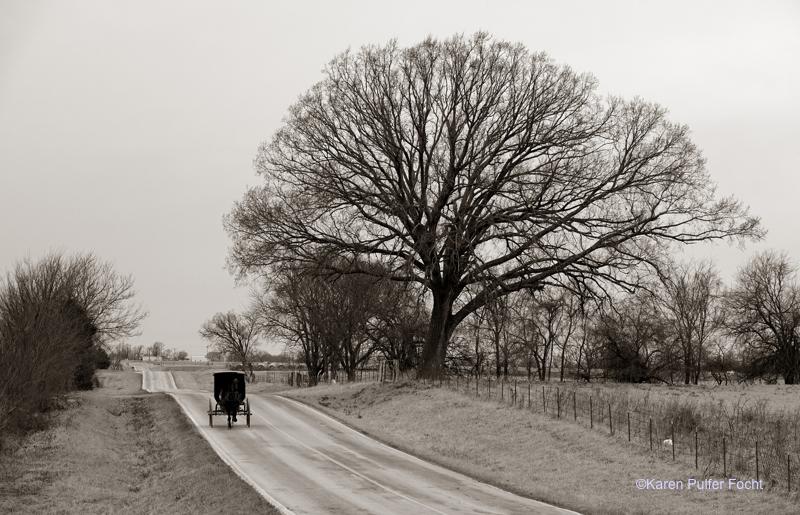 FOCHT© Amish 2018 1145.JPG