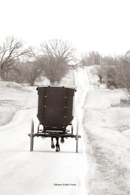FOCHT© Amish 2018 1144A.JPG