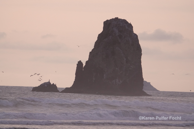 07182019 Cannon Beach  © 021.JPG