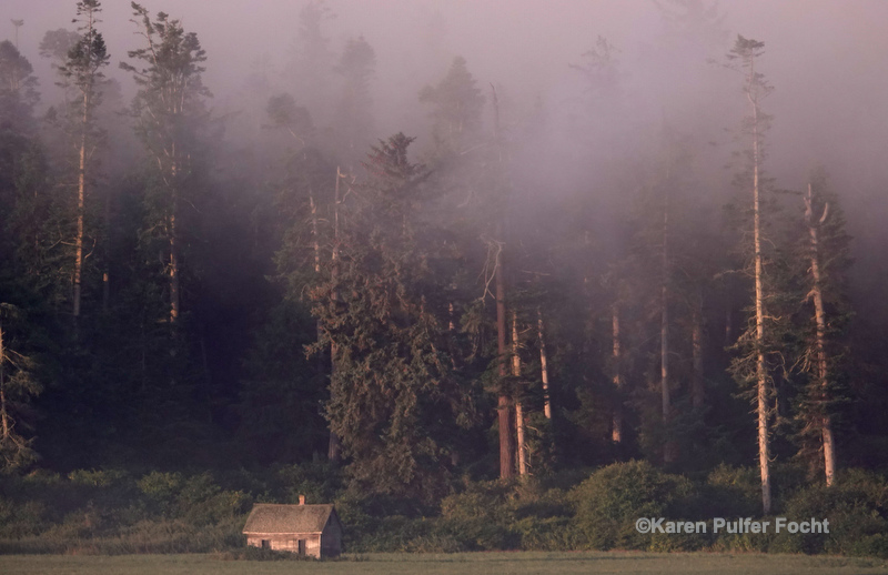 07202019 Whidbey Island ©361a.JPG