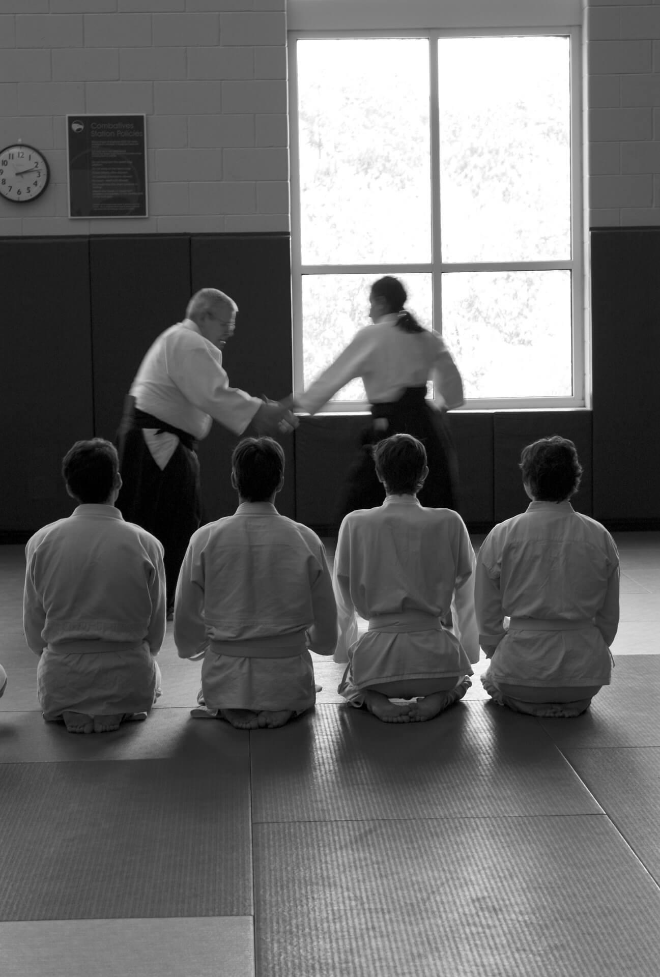 aikido-362957_1920.jpg