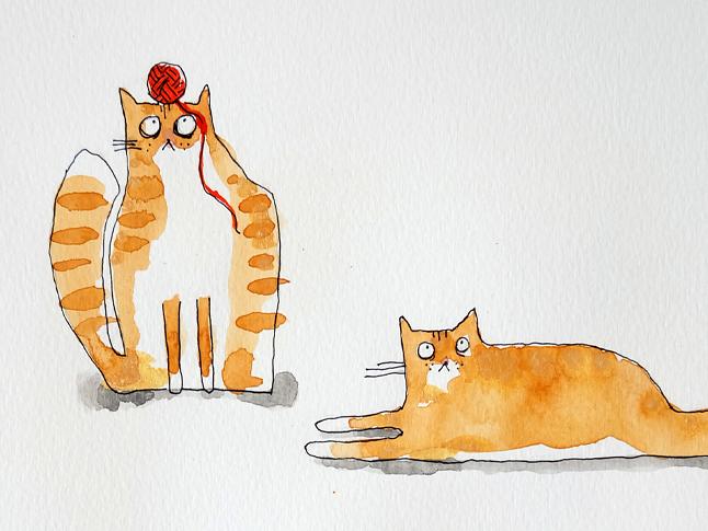 """""""Frassi var en av världens snällaste katter. Hon var extremt kelen och tvättade gärna både sig själv, mig och även en del av mina vänner. Hon hatade kattburen men älskade att ligga nära och även på mig. Hon var skeptisk mot nya människor i början men sedan var det buffande och """"krav"""" på att bli kelad med."""""""
