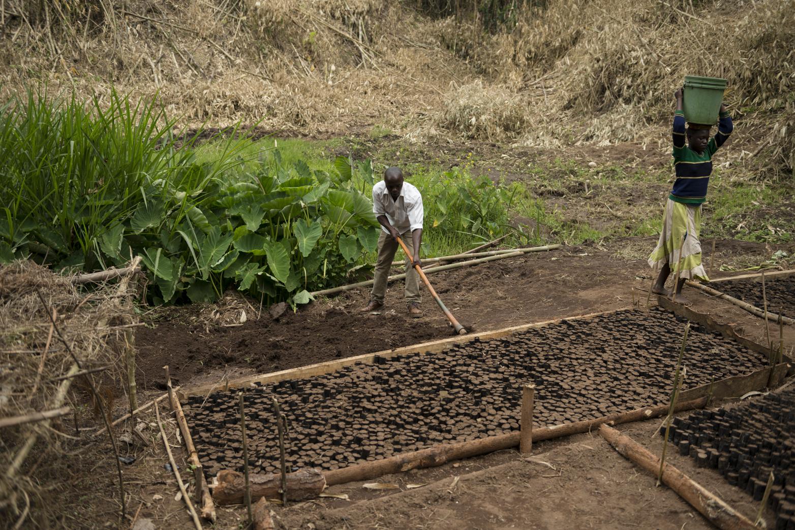 Soil preperation